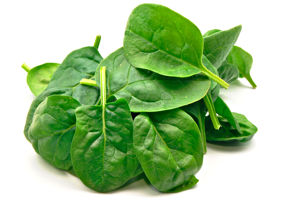 Spinach | Fresh Square